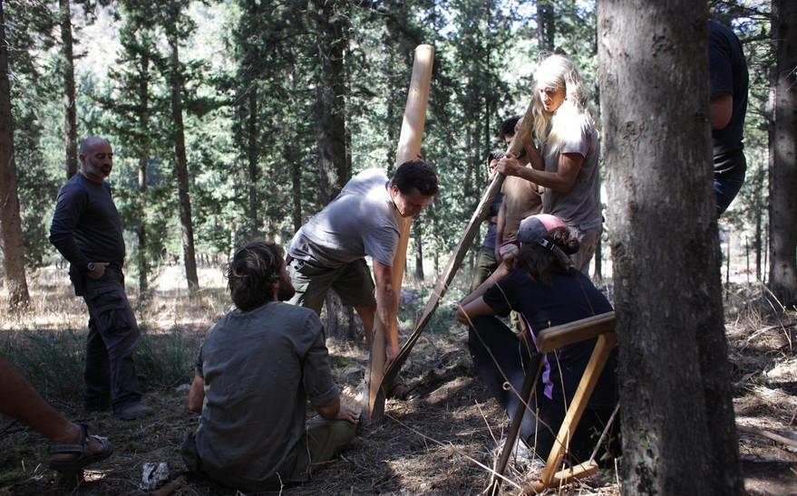 קילוף קליפת העץ לאחר הביקוע