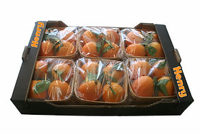 Cestas naranjas confeccinadas Flow pack de Tamarit Export