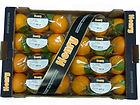 Naranjas de Tamarit Export