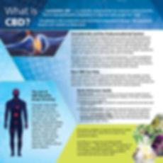 Flyer for Website.jpg
