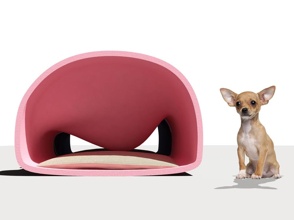 dog-bed-front2.jpg