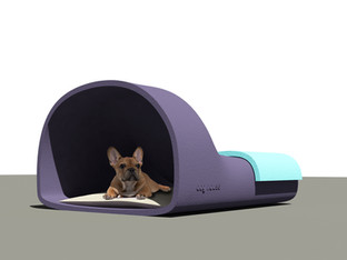 DOG HOUSE CONCEPT
