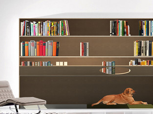 PET LIBRARY HACK