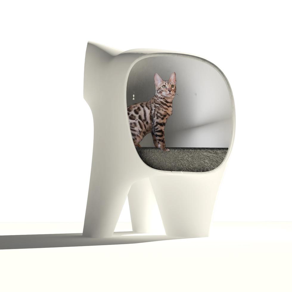 CAT BLOB