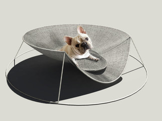 DOG BED S