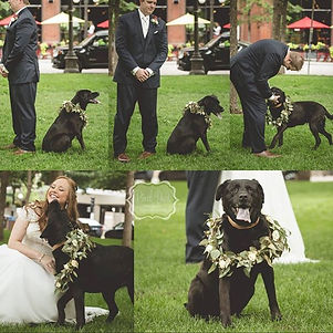 Congrats to Kelley, Shawn, and their precious baby girl Shelby! What an honor to be your Pet Wedding