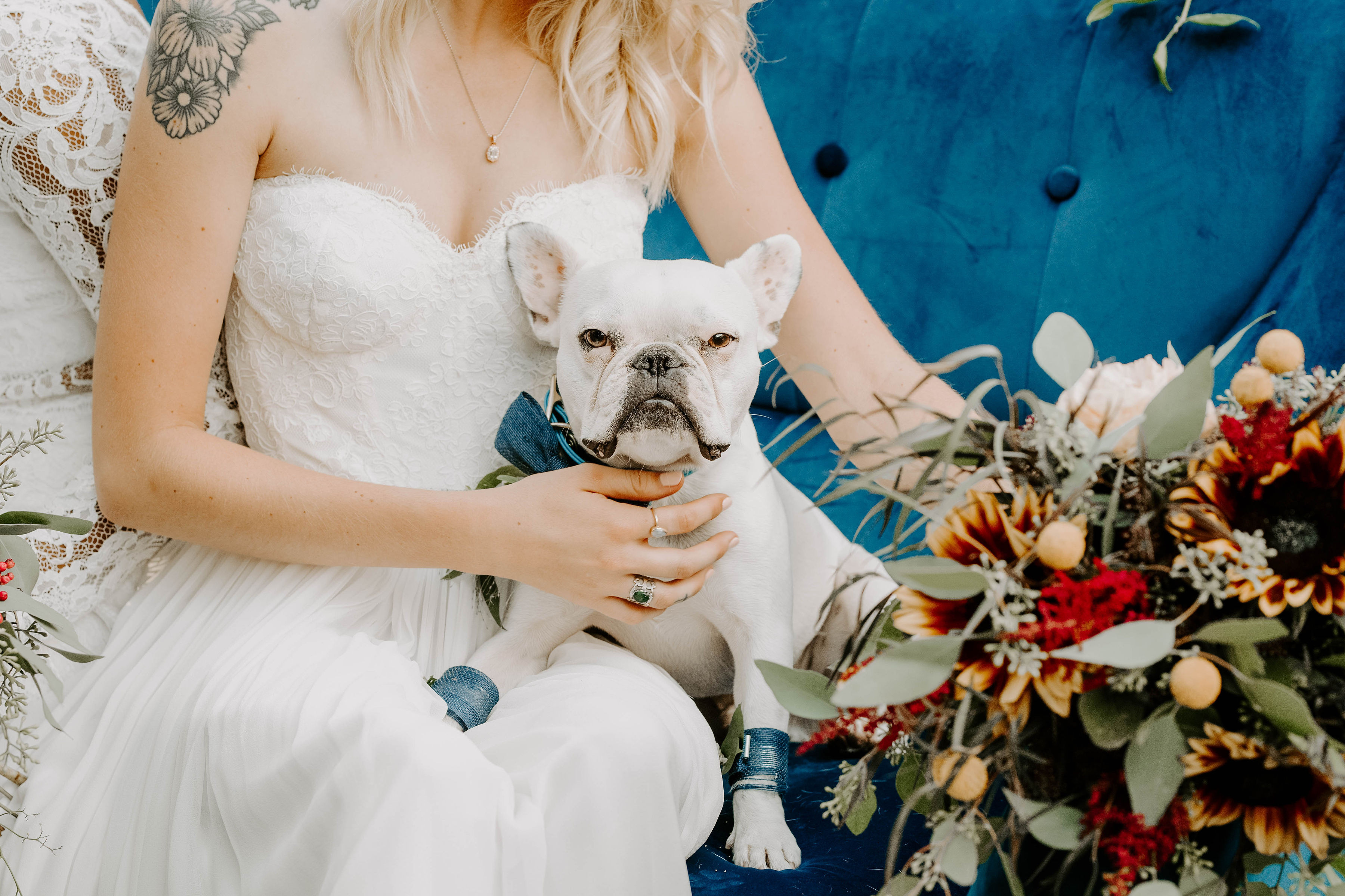 12pm-2pm Doggy Wedding Fair (SOLD OUT)