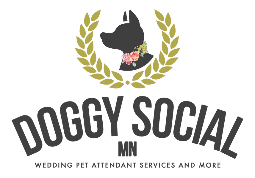 Doggy Social_Full-1 (1).png