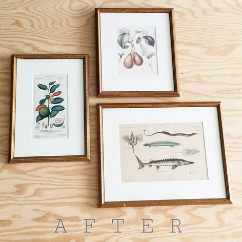 Two re-purposed frames to fit a collection of three pieces (after) and a white mat to tie them all together!