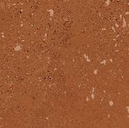 57_AUREA_reddisch-brown 339x480.tif
