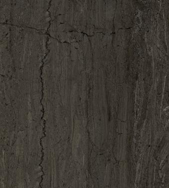 30_MAESTRO_dark grey 339x480.tif