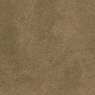 27_SANDRO_brown 339x480.tif
