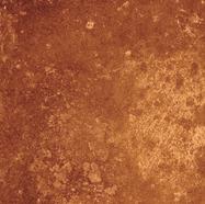 37_COMET_rusty orange 339x480.tif