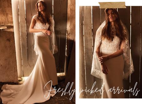 How To Shop A Wedding Dress Trunk Show