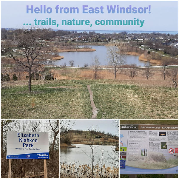 East Windsor Postcard.jpg