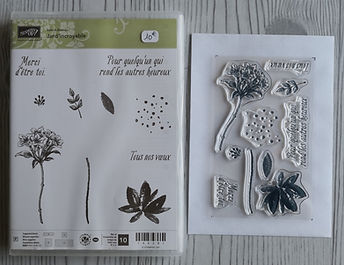 tampons,stampin up,promo,destockage,réduction