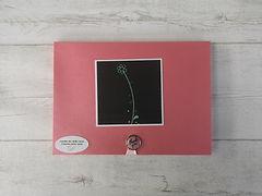 album scrap photos minnie walt disney