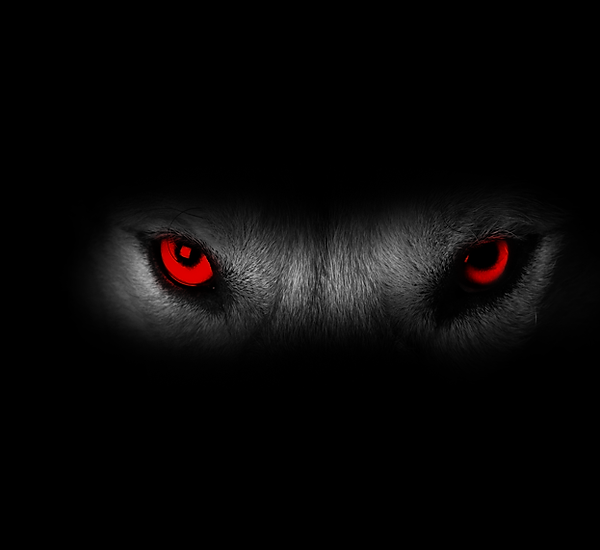 wolf eyes.png
