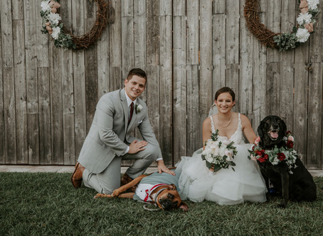 Stunning Outdoor Spring Real Wedding