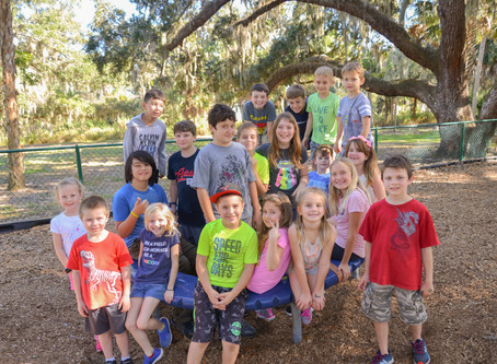 Sarasota Parks Summer Camp