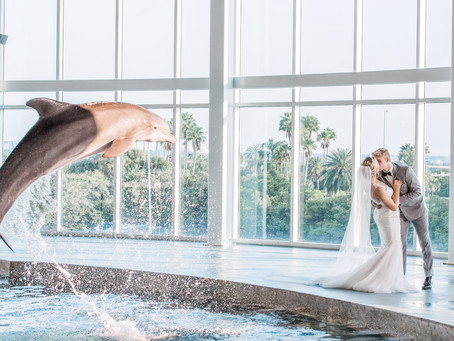 """The Majestic Waves of King Triton"" - Spring Styled Shoot at the Clearwater Marine Aquarium"