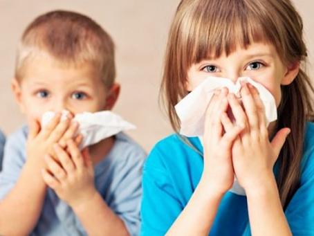 Influenza Season in Sarasota