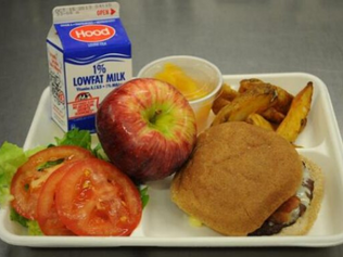 Battling Childhood Obesity with Healthier School Lunch Options