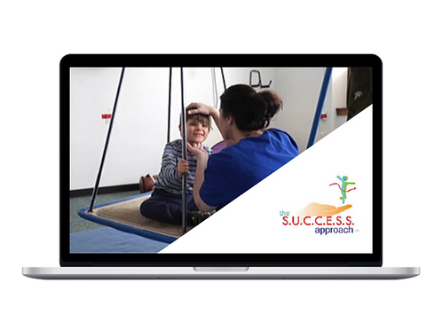 An Introduction to The S.U.C.C.E.S.S. Approach Online Course: Starts Jan 6, 2021
