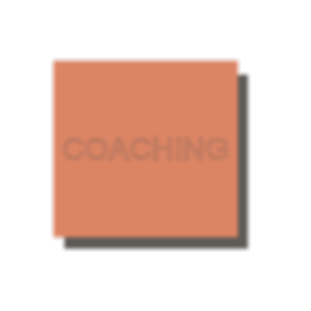 website-block-COACHING.png