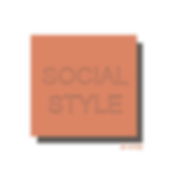 SOCIAL-STYLE-LOGO-nobackground.png