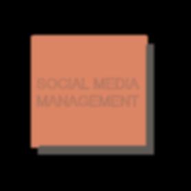 website-block-SMM.png