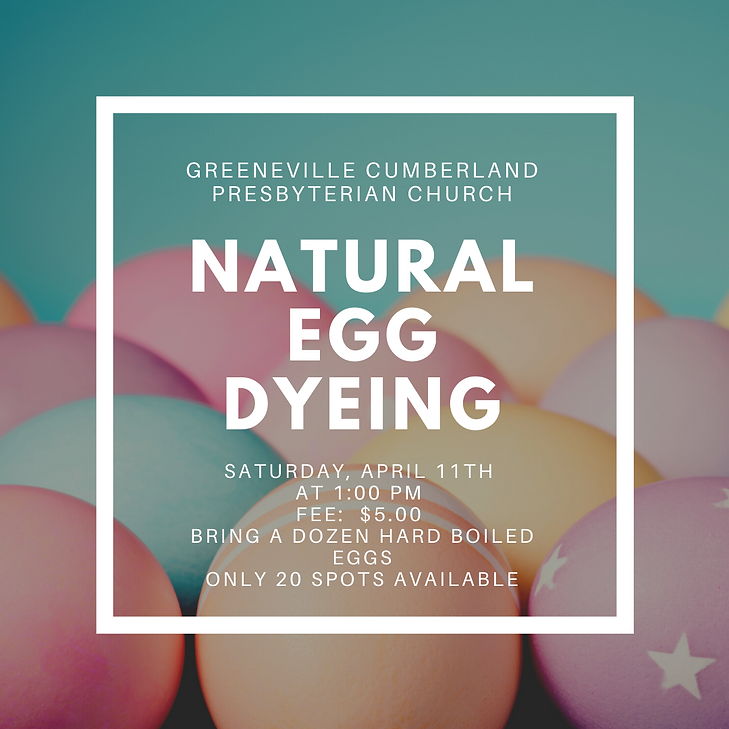 egg dyeing correct .png