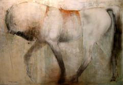 chevaux-017jpg