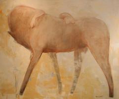 chevaux-020jpg