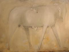 chevaux-019jpg