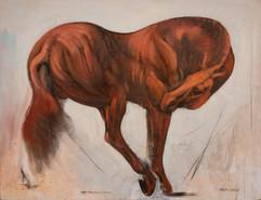 chevaux-037jpg