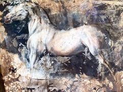 chevaux-036jpg