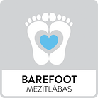 DDstep_icon_barefoot.png