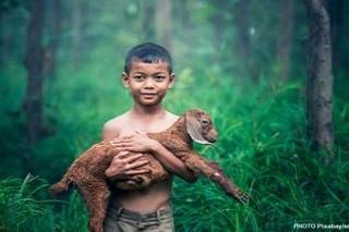 Per uscire dalla giungla dell'Economia Amazzonica e salvarci