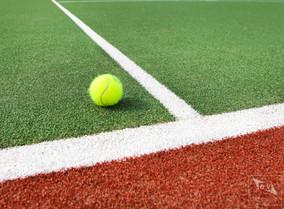 Ball Court 1.jpg
