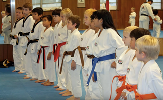 Kids class with many belt colors lined up