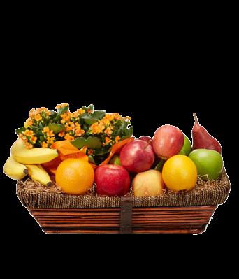 Frutas con planta