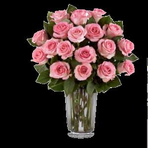 Roses&Roses