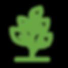 HLF_plants.png