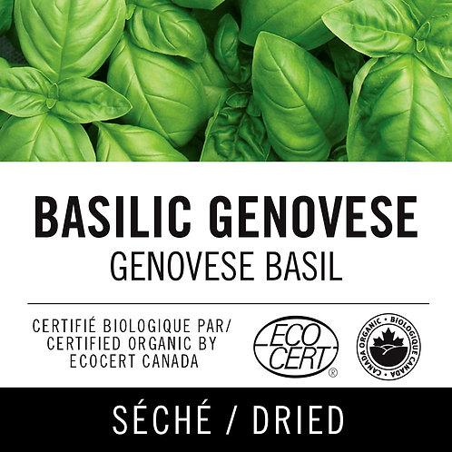 Basilic genovese - Genovese basil