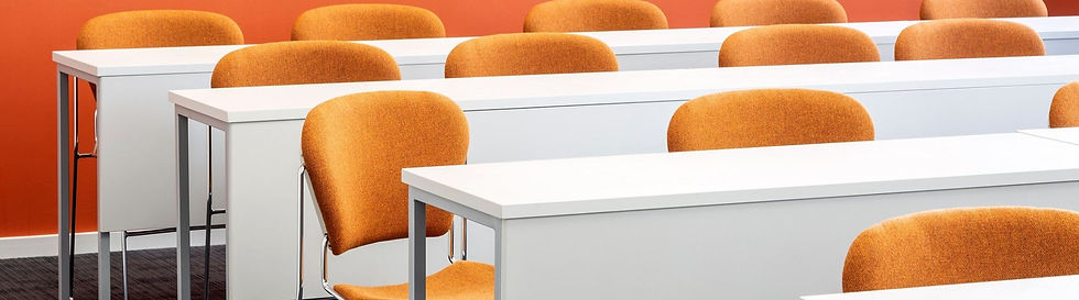 desk-modesty_edited.jpg