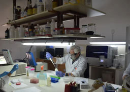 Investigadores explican cómo se analizan las muestras de COVID-19