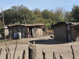 Usarán Big Data para detectar dónde se esconde el Chagas