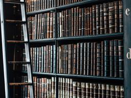 Diagnóstico y prospectiva sobre la documentación histórica en Argentina