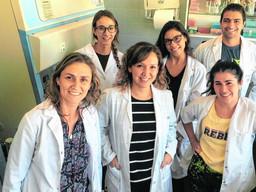 Investigadores salteños ensayan una vacuna contra el Chagas